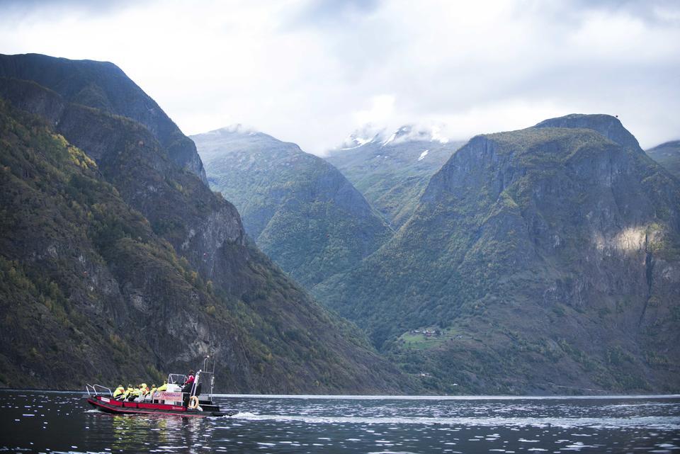 Ut ein tur med Fjord Safari.